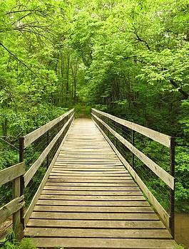 The Wooden Bridge by Lori Frisch