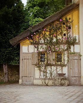 The Yellow Cottage by Danny Van den Groenendael
