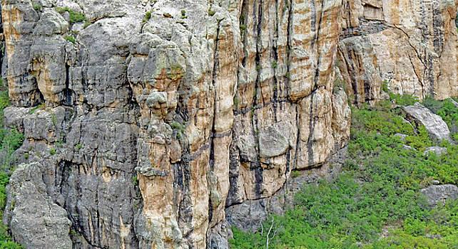 Thimble  Rock  Base by Carl Deaville
