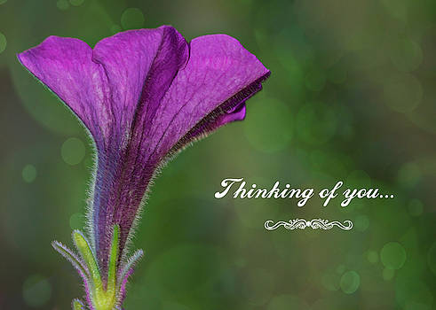 Thinking of You by Cathy Kovarik