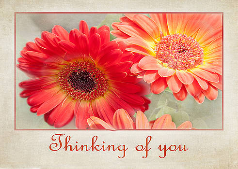Thinking of you by Geraldine Alexander