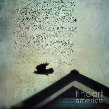 This roof is my home by Priska Wettstein