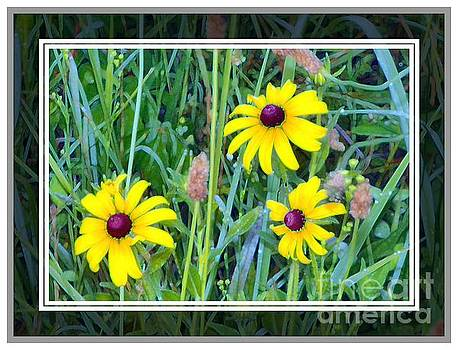 Three Flowers in the Field by Shirley Moravec