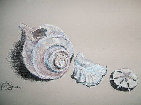 Three Shells by Judy Pearson