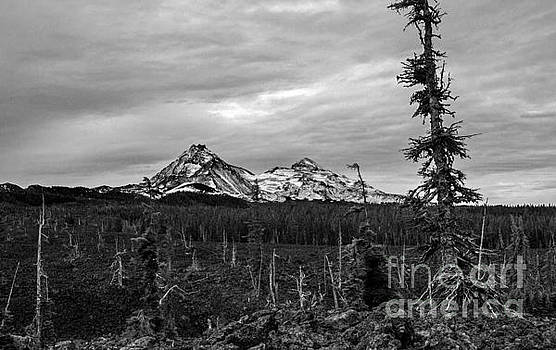 Three Sisters Oregon by Michael Cross