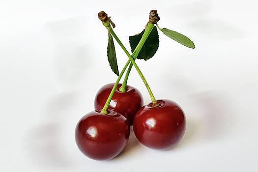 Three Sour Cherries by Marinela Feier