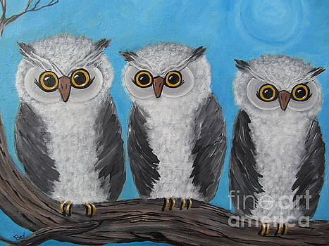 Three Wise Old Owls by Beverly Livingstone