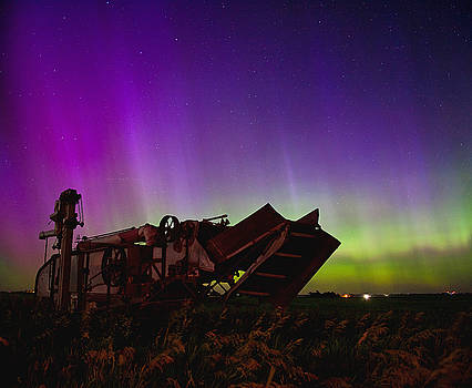 Thresher and the Lights by Chris  Allington