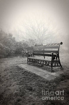 Throne of the Fog Queen by Pete Edmunds