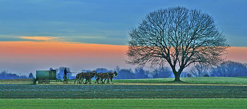 Through The Fields by Scott Mahon