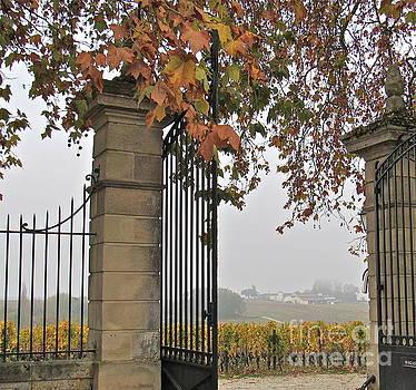 Through the Gates by Barbara Plattenburg