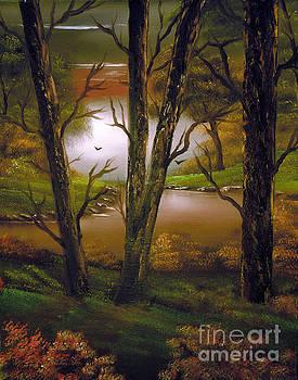 Through the trees. by Cynthia Adams