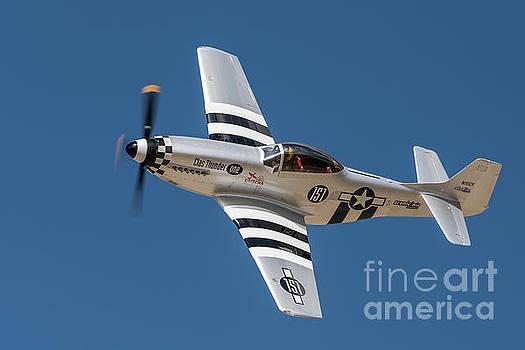 Thunder Mustang 151 by Steve Rowland