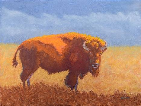 Thunder on the Prairie by Nancy Jolley
