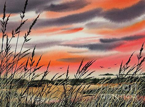 Tideland Sunset by James Williamson