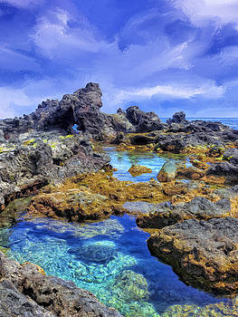 Dominic Piperata - Tidepools Near Ho
