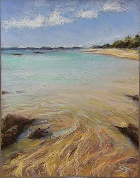 Tide's Retreat by Susan Jenkins