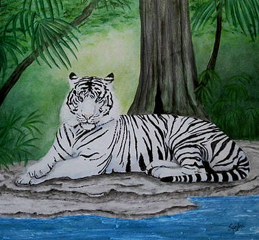 Tiger in the Jungle by Sandra Maddox