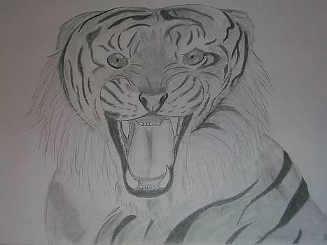 Tiger by Kristen Hurley