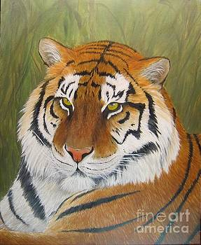 Tiger by Sid Ball
