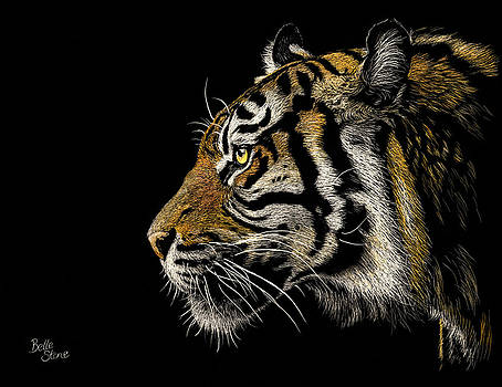 1st Place - Nature 2015 Art Exhibition - Tiger Tiger by Belle Stone