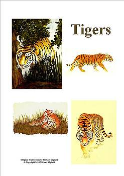 Tigers Collage by Michael Vigliotti