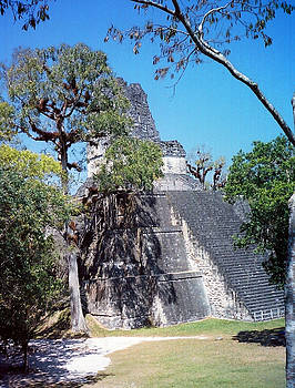 Kurt Van Wagner - Tikal IV