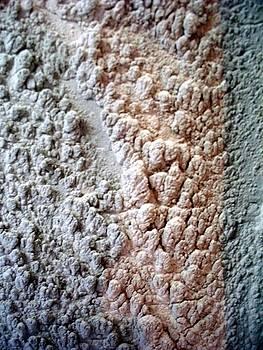 Tile Saw Mud Splatterings by Jason Nelson