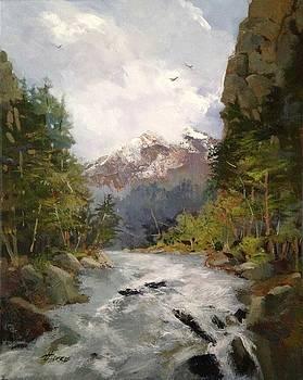 Timberlands by Helen Harris