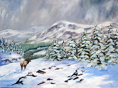Timberline by David  Maynard