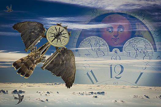 Time Flies by Daniel G Walczyk