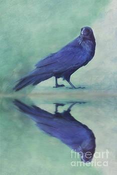 Time to reflect by Priska Wettstein