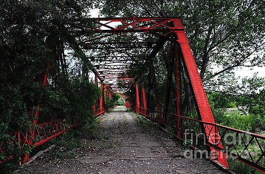 Time's Forgotten Walking Bridge by Natalie Ortiz