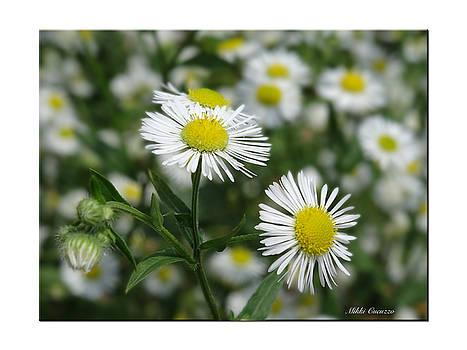 Tiny Flowers by Mikki Cucuzzo
