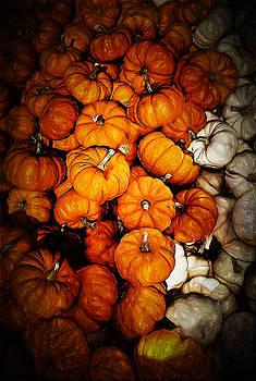 Tiny Pumpkin Pile by Cindy Boyd