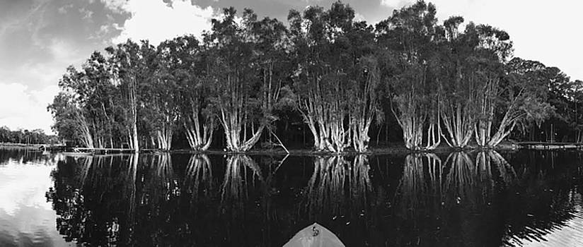 Tip of the kayak by Tara Miller