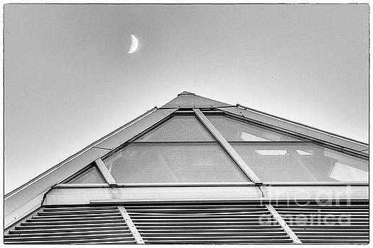 Darcy Michaelchuk - Tip of the Mutart with the Moon.