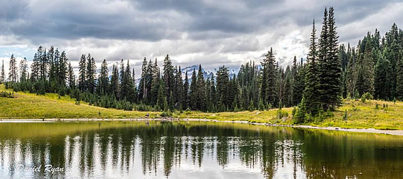 Tipsoo Lake Reflection by Daniel Ryan