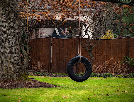 Tire Swing by Valerie Morrison