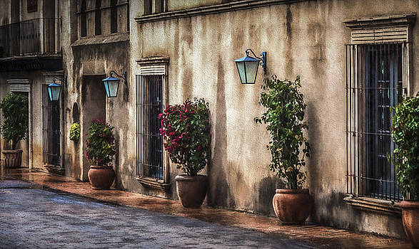 Tlaquepaque Street by Paul Bartell