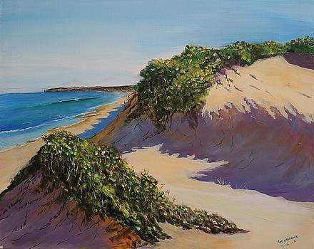 To the Beach by Bob Hasbrook