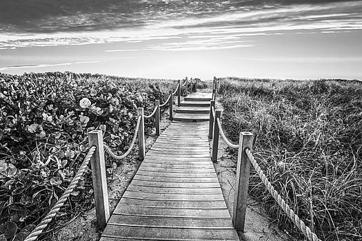 Debra and Dave Vanderlaan - To The Beach in Black and White