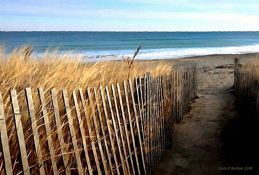 To the Beach by Linda Seifried