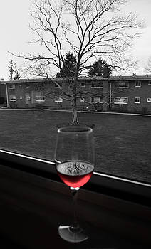 Toast to Nature by Mandy Wiltse