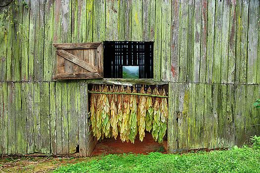Tobacco Barn by Ron Morecraft