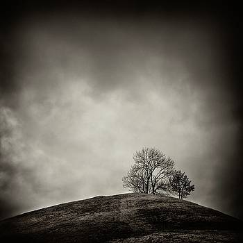 Tobias hill by Jaromir Hron