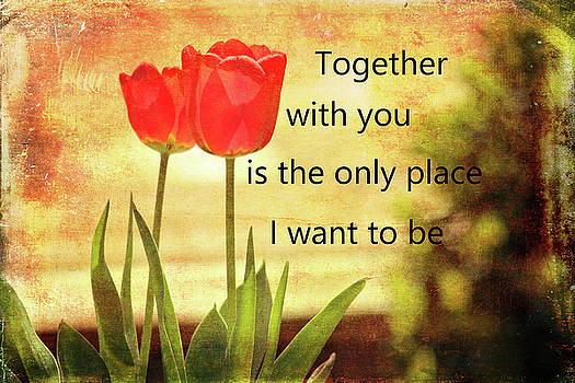 Together With You by Trina Ansel