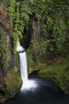 Toketee Falls by Brian Bonham