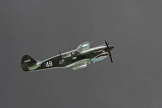 Tomahawk in Smoke by Shoal Hollingsworth