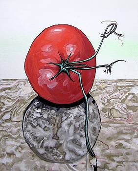 Tomato on Marble by Mary Ellen Frazee